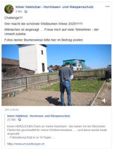 Wildblumenwiese Challenge 2020
