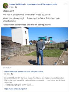 Wildblumen Challenge 2020